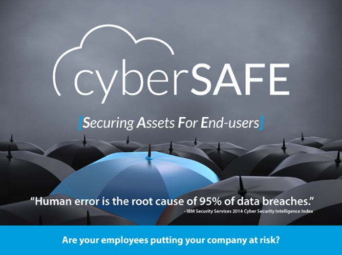 CyberSafe - Securing Assets for End Users